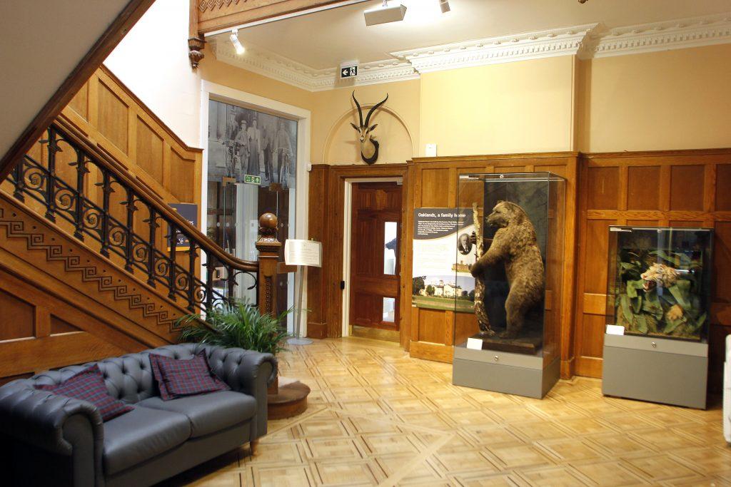Chelmsford Museum-bear
